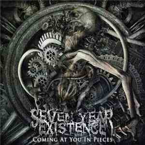 Seven Year Existence - Coming At You In Pieces album